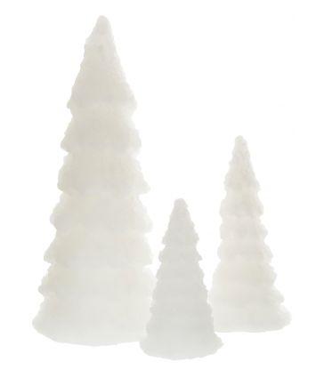 Sapin blanc LED H19,5cm