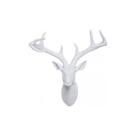 Trophée cerf blanc