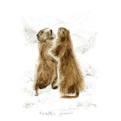 Toile Marmottes joyeuses