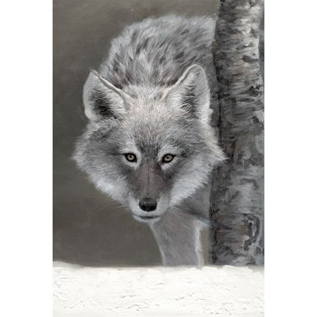 Toile Loup gris