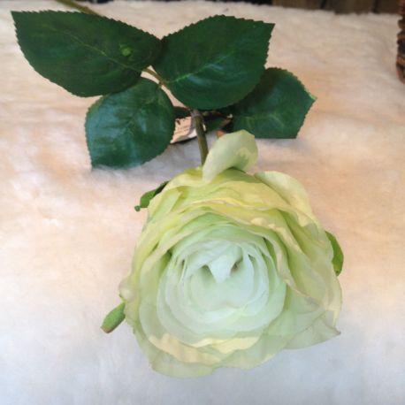 Rose vert clair H49
