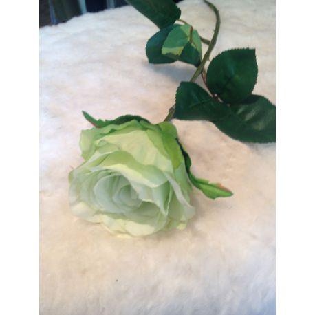 rose blanche et verte 49 cm