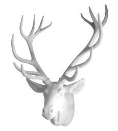 Tete de cerf blanche XXL