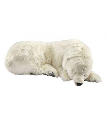 Ours polaire dormeur