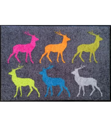 Tapis crossing deer 50*75