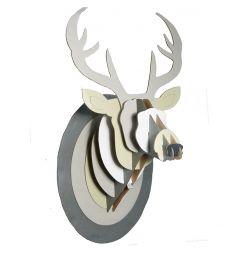 Trophée de cerf naturel