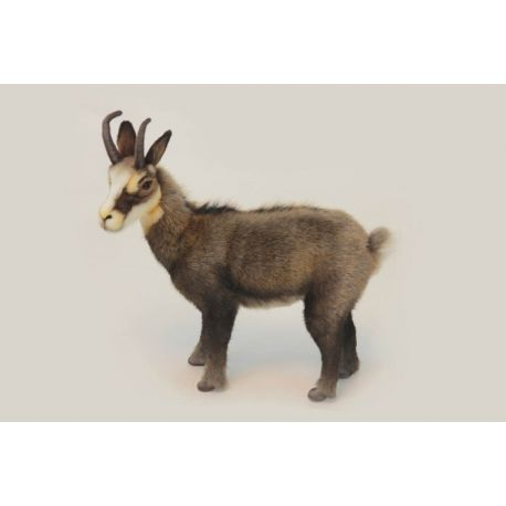 Chamois taille 30 cm